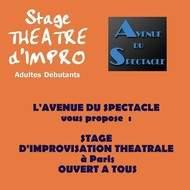 Stage d'initiation à l'Improvisation théâtrale à Paris, ouvert à tous