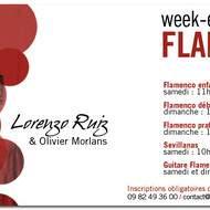 FLAMENCO & SEVILLANAS avec Lorenzo Ruiz : Stages mensuels à Banyuls/Mer