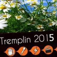 Tremplin musical du festival de Bouche à Oreille